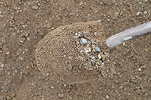 Blackburn Excavating in Salmon Arm offers a wide variety of gravel for sale.
